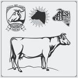 Etiquetas da carne do vetor e ilustração da vaca Moldes para logotipos da carne do projeto Fotografia de Stock