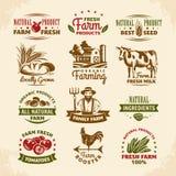 Etiquetas da exploração agrícola do vintage Imagens de Stock Royalty Free