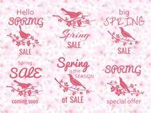 Etiquetas da venda da mola com fundo da flor de cerejeira ilustração do vetor