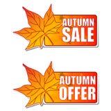Etiquetas da venda e da oferta do outono com folha ilustração do vetor