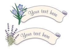 Etiquetas de la escritura de la etiqueta con lavanda y nomeolvides dulces libre illustration