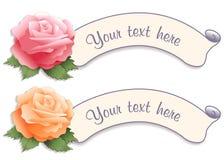 Etiquetas de la escritura de la etiqueta de la vendimia con las rosas del jardín Imágenes de archivo libres de regalías