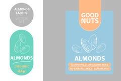 Etiquetas de las nueces de la almendra con los elementos verdes Siluetas exhaustas de la nuez de la historieta ilustración del vector
