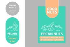 Etiquetas de las nueces de pacana con los elementos coloridos Insignia exhausta del producto de las pacanas de la historieta libre illustration