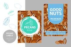 Etiquetas de las nueces de pacana con textura exhausta de los elementos del movimiento del cepillo y de las pacanas de la histori libre illustration