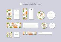 Etiquetas de papel da roupa do vetor para a cópia com papaia e flor do teste padrão Imagens de Stock