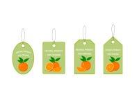 Etiquetas del diseño con la naranja jugosa Fotografía de archivo
