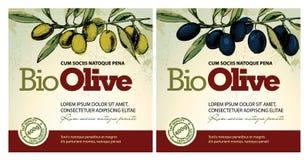 Etiquetas do petróleo verde-oliva Fotos de Stock Royalty Free