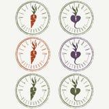 etiquetas do restaurante com cenoura e nabo ilustração do vetor