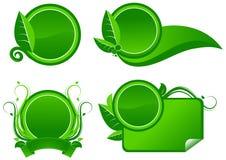 Etiquetas do verde com folhas Foto de Stock Royalty Free