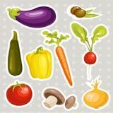 Etiquetas dos vegetais dos desenhos animados Imagens de Stock Royalty Free