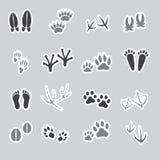 Etiquetas engomadas animales básicas de las huellas, sistema Imágenes de archivo libres de regalías