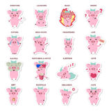 Etiquetas engomadas de los cerdos fijadas libre illustration