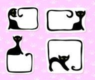 Etiquetas engomadas del gato Imágenes de archivo libres de regalías