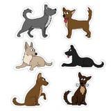 Etiquetas engomadas determinadas del perro lindo Diversas razas del sistema del vector de los perros de iconos y de ejemplos Fotos de archivo libres de regalías