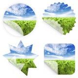 Etiquetas engomadas hermosas de la hierba Imagen de archivo