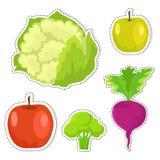 Etiquetas engomadas maduras del vector de las frutas y verduras fijadas Fotografía de archivo