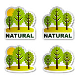 Etiquetas engomadas naturales del bosque del árbol Imagenes de archivo