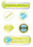 Etiquetas engomadas y botones de la naturaleza fijados Imagen de archivo