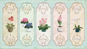 Etiquetas florales del vintage Fotos de archivo