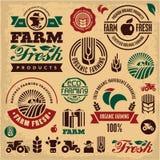 Etiquetas frescas de la granja La agricultura biológica aisló el sistema de la muestra del vector Granjero Imágenes de archivo libres de regalías