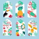 Etiquetas hawaianas tropicales con el tucán, el flamenco, los loros y el pineaaple foto de archivo