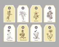 Etiquetas orgánicas de las hierbas Imagen de archivo