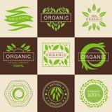 Etiquetas orgánicas y etiquetas de Eco fijadas Imágenes de archivo libres de regalías
