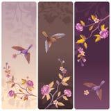 Etiquetas ou bandeiras com a árvore do pássaro e da flor ilustração do vetor
