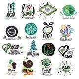 Etiquetas sanas del alimento biológico para el logotipo de los vegetarianos Restaurante, muestra vegetariana del menú del café, s Imagen de archivo libre de regalías