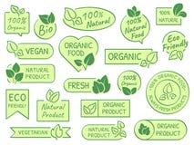 Etiquetas verdes de las hojas Productos de Eco, sanos y naturales Certificó la etiqueta vegetariana orgánica fresca del vector de stock de ilustración