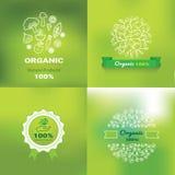Etiquetas y elementos del alimento biológico, sistema para la comida y bebida Fotos de archivo