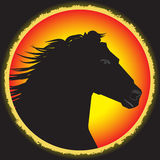 Etiquete el diseño con el caballo dibujado mano para los carteles Foto de archivo libre de regalías