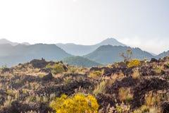 Etna东南全景山顶火山口,西西里岛 免版税库存照片