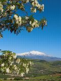 etna横向火山 免版税库存图片