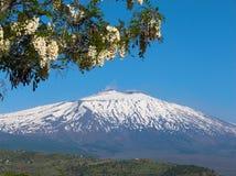etna横向火山 图库摄影