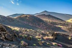 Etna κρατήρας συνόδου κορυφής του νοτιοανατολικού πανοράματος, Σικελία Στοκ φωτογραφία με δικαίωμα ελεύθερης χρήσης