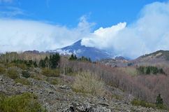 Etna με τις καπνίζοντας κλίσεις αιχμών και άνοιξη στοκ φωτογραφία με δικαίωμα ελεύθερης χρήσης