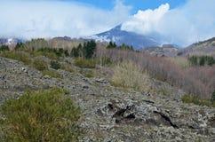 Etna με τις καπνίζοντας κλίσεις αιχμών και άνοιξη στοκ εικόνες