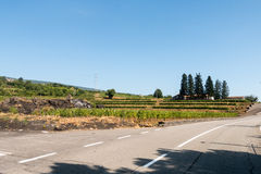 Etna路 免版税库存图片