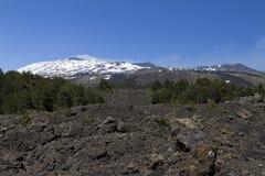 Etna from Botanical Garden Stock Photography