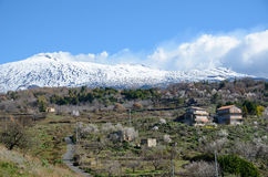 Etna with the fertile slope in the foreground Royalty Free Stock Images