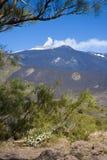 Etna i Sicily royaltyfri fotografi