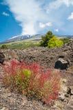 Etna landskap Arkivfoto