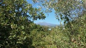Etna Sicily Imagens de Stock