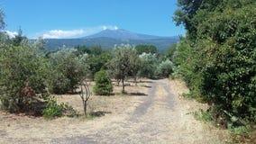 Etna Sicily royalty free stock image
