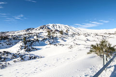 Etna in snow Stock Photography