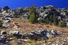 etna szczyt Obraz Royalty Free