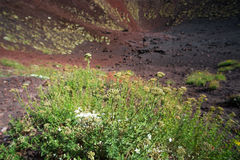 Etna volcano craters in Sicily, Italy Stock Photo