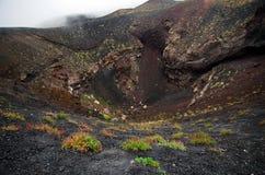 Etna Volcano Sicilien Fotografering för Bildbyråer